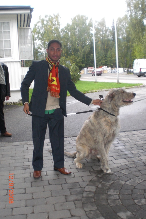 What a dog!..Norwegian doggy